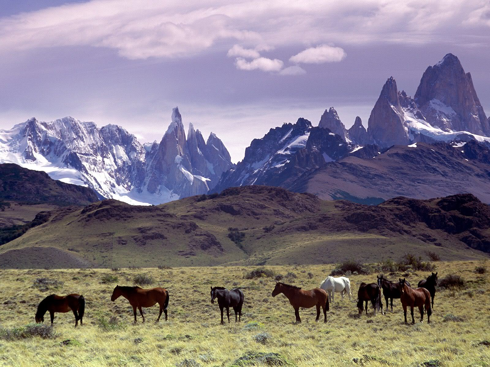 நான் ரசித்த இயற்கை காட்சில் சில உங்களுக்காக....2 - Page 19 AndesMountainsPatagoniaArgentina