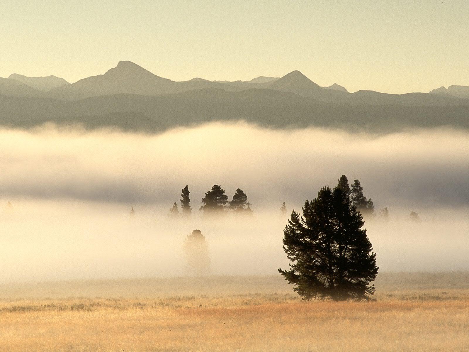 அழகு மலைகளின் காட்சிகள் சில.....02 - Page 22 FogatSunrisePelicanValleyYellowston