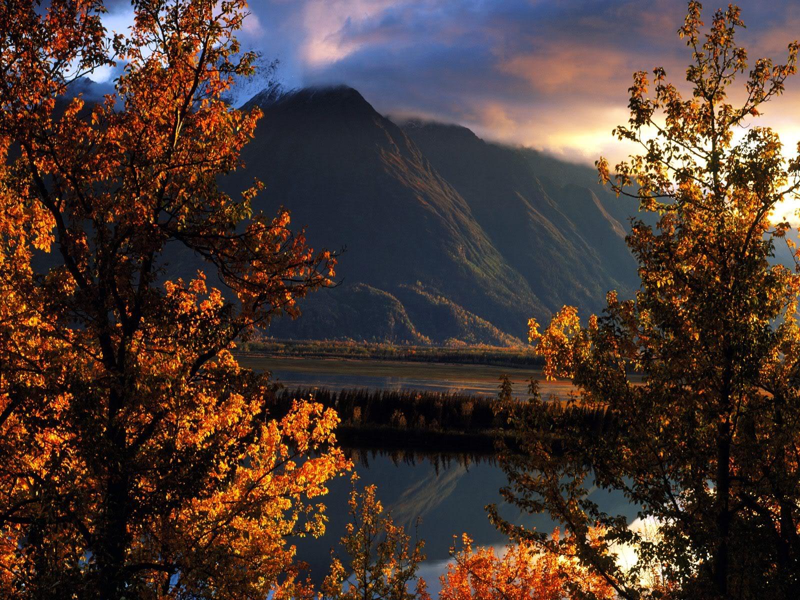 அழகு மலைகளின் காட்சிகள் சில.....02 - Page 22 PioneerPeakMatanuskaValleyAlaska