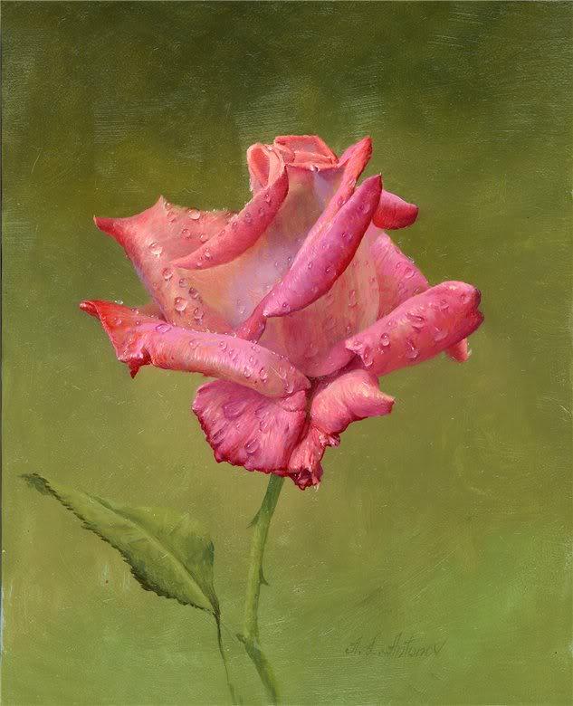 மீனு தரும்  ரோஜா மலர்கள் உங்களுக்காக... - Page 3 Flower
