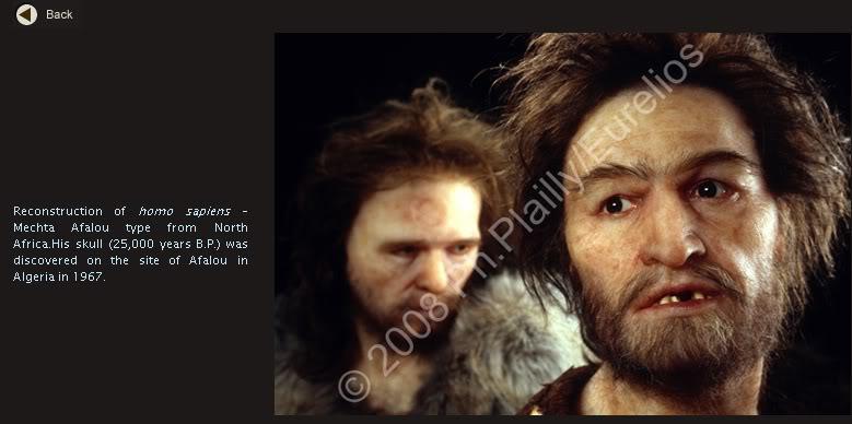 l'image de l'homme préhistorique - Page 8 Afalou