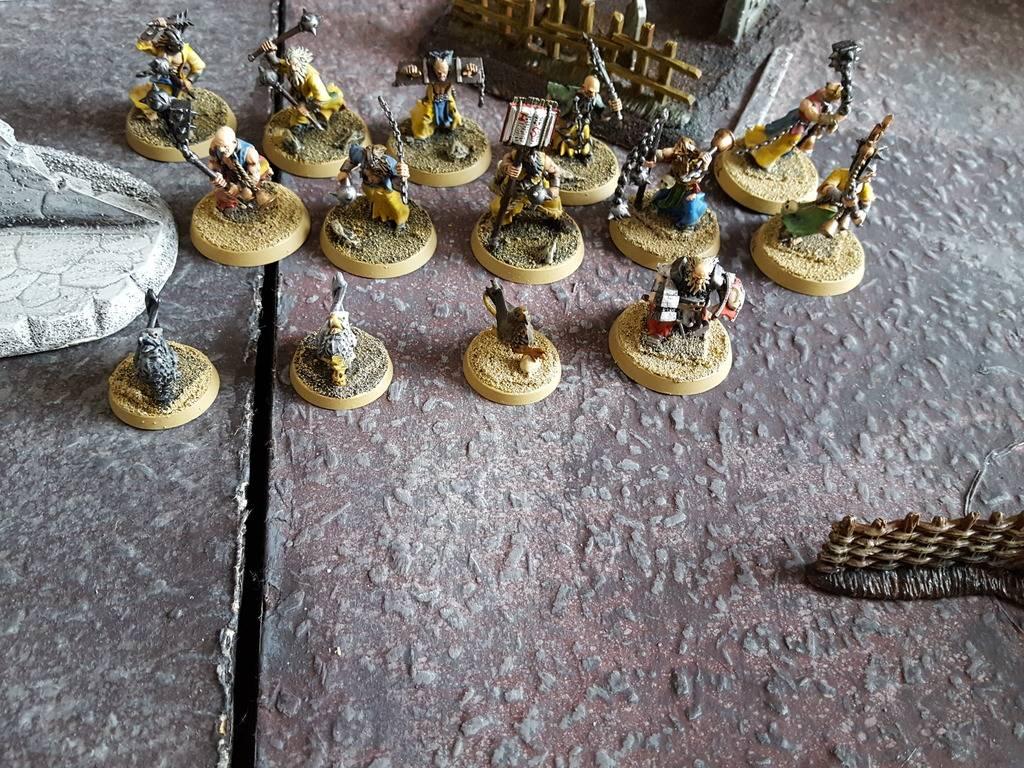 The Ironfang Pirate Fleet In Duskhaven 20160421_125811_zpssubdkx0q
