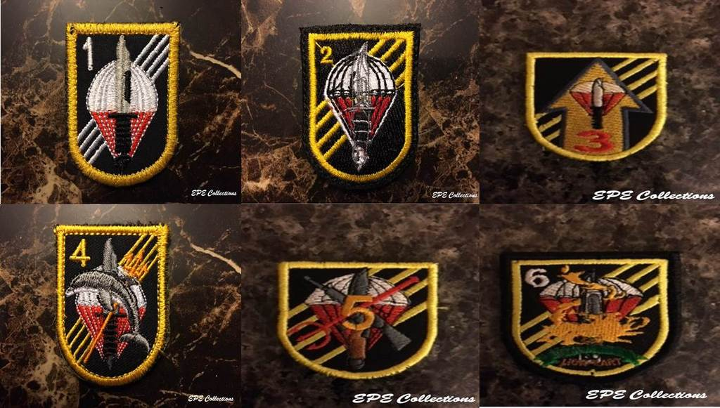 Special Forces patches Special%20Forces%20Battalions