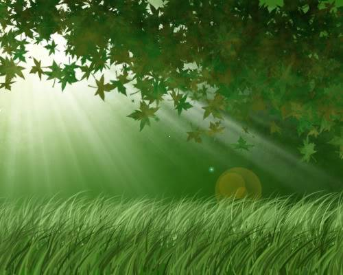 Tutorial Photoshop: Crear un bosque muy facilmente FondoArboles