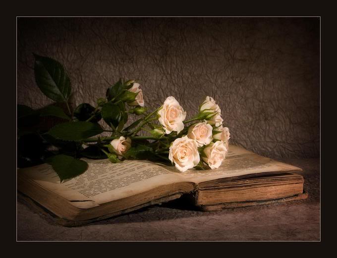 Romantika sacuvana od zaborava... BookOfRoses