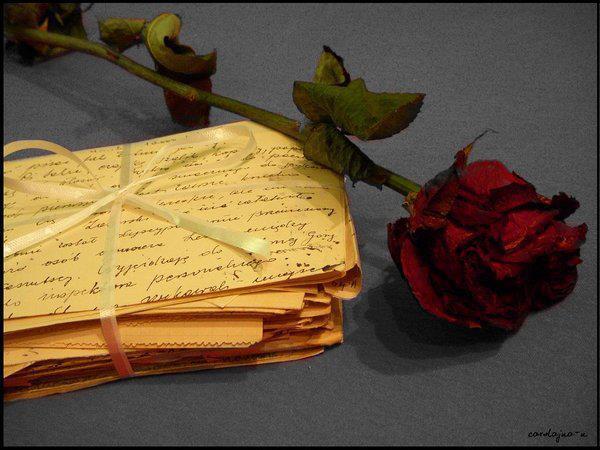 Pisem ti pismo... 545353_548642028486220_1562494416_n_zps9f1a0051