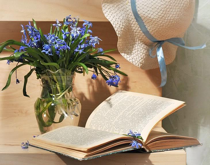 Book  1756096