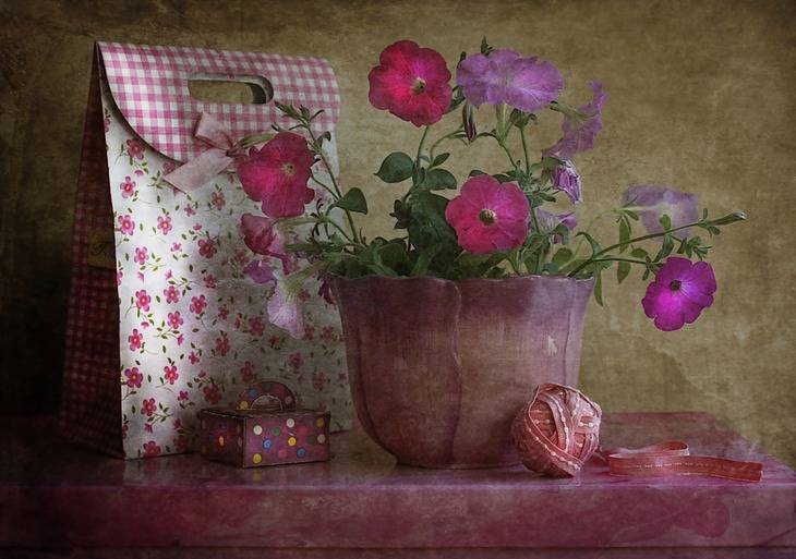 Romantika sacuvana od zaborava... - Page 4 1796707-3
