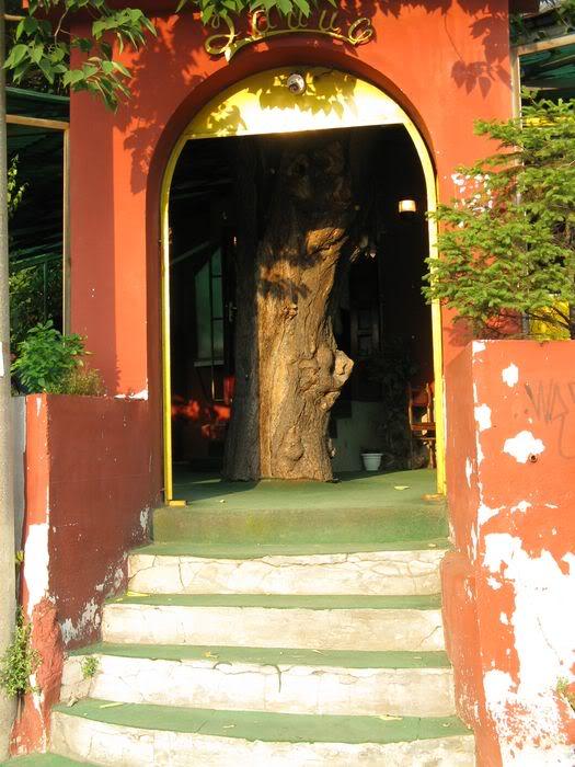 Kult drveta i biljaka kod starih Srba Bg_hrast2