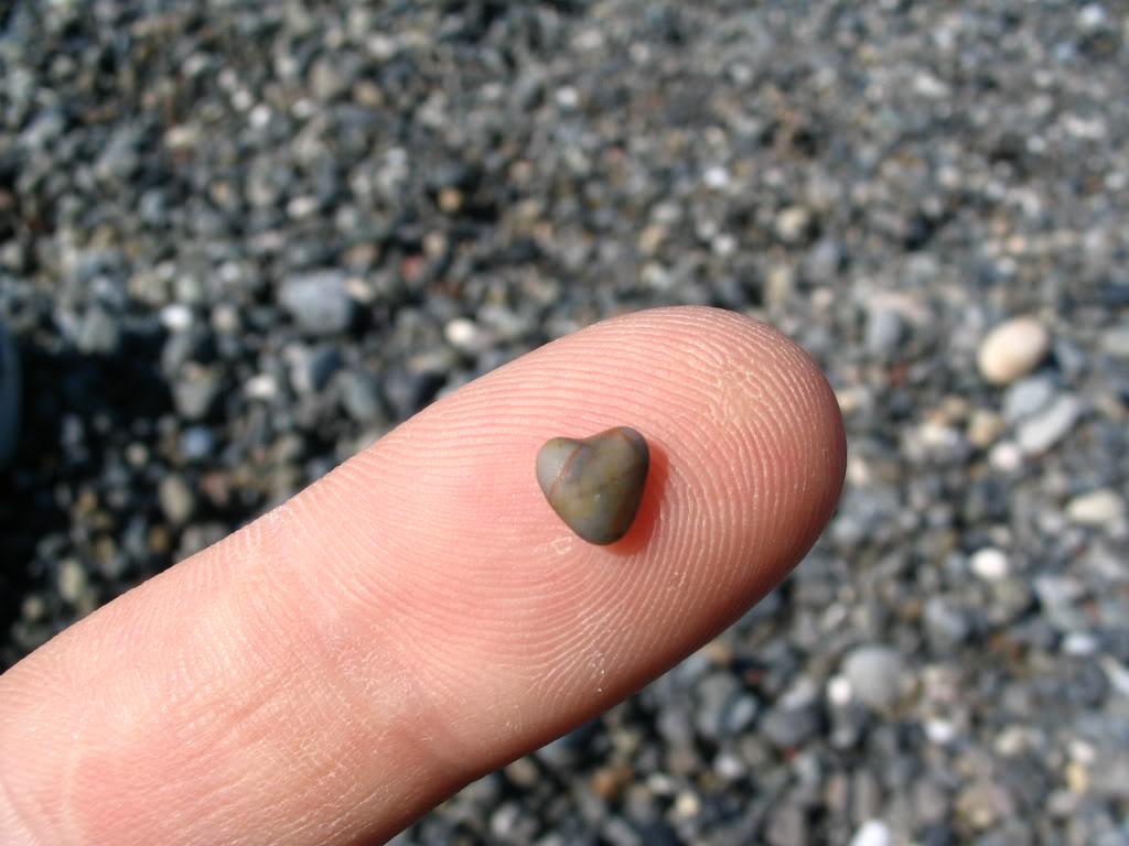 Romanticno srce - Page 5 Heart_shaped_rock_by_speedyfearless