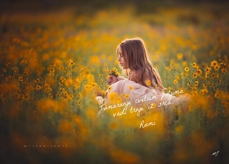 Rumi - Page 2 7d3a1ede-cae8-4c45-aad4-cca8b6180a74_zpsbezl2jzu