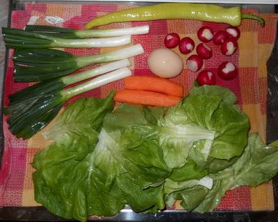salata - Moja prolecna salata  DSCN3590