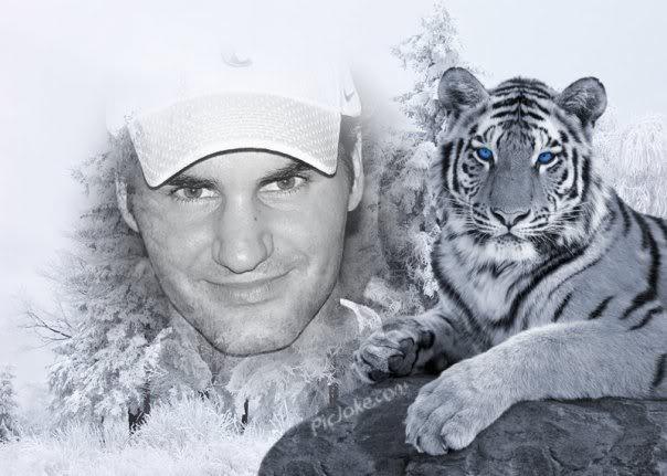 Dibujos de Roger Federer - Página 3 18569_1273597476083_1114293238_3084
