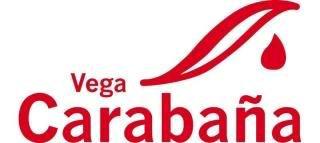 Un nuevo premio a Vega Carabaña LOGOVEGACARABAA-1