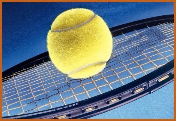 """Perales de Tajuña: VIII Torneo de Tenis Indoor """"Villa de Perales"""" 2010 1066-open-tenis-valencia"""