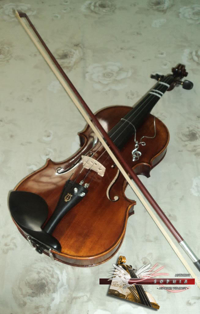 Extreme Newbie: Which violin to buy? 4-4