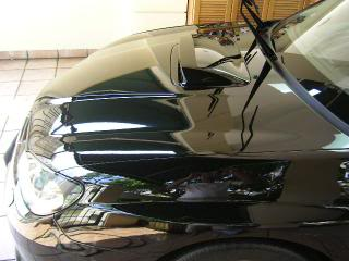 Mobile Polishing Service !!! - Page 4 PICT42469