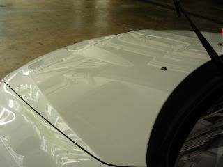 Mobile Polishing Service !!! - Page 38 PICT39440