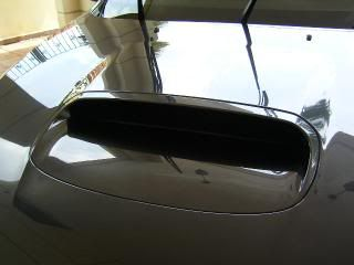 Mobile Polishing Service !!! - Page 38 PICT39482