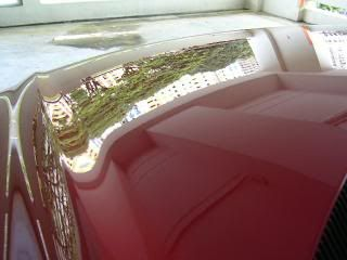 Mobile Polishing Service !!! - Page 38 PICT39625