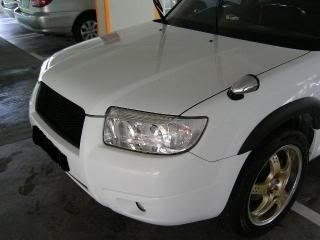 Mobile Polishing Service !!! - Page 38 PICT39642