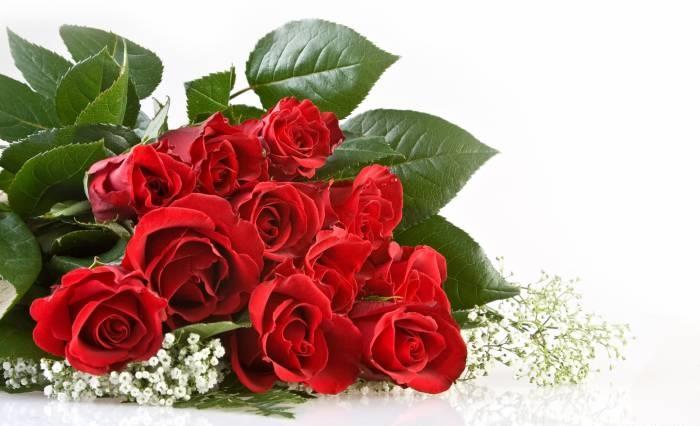 Поздравления с Днём Рождения 1766fabd47b14ca40934106cc6351495