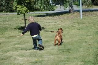 hunder og venner Hegepbesk006