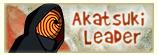 Tout sur les personnages Akaleader