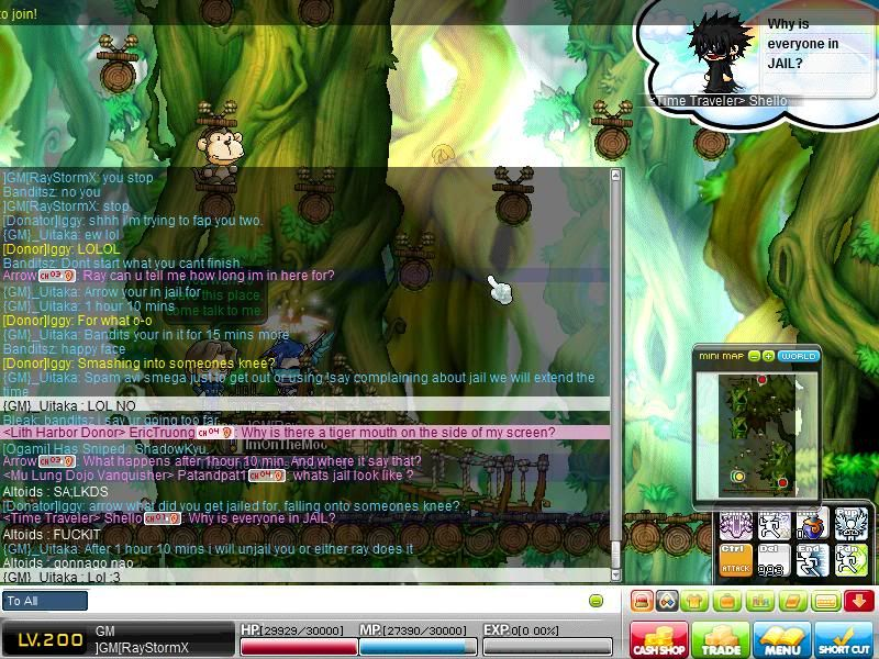 Report on Raystorm Maple0333