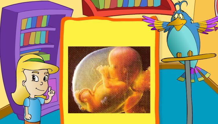 Juegos educativos online (Para niños y no tan niños) Micuerpoargentino