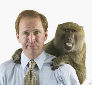 La animalidad de nuestra conducta sexual y de pareja Hombre-mono