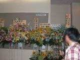 Matsuura Aya... Nuevas Noticias - Página 2 Th_flowers1004