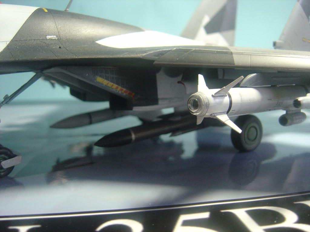 Su-35BM  1/48 DSC00094