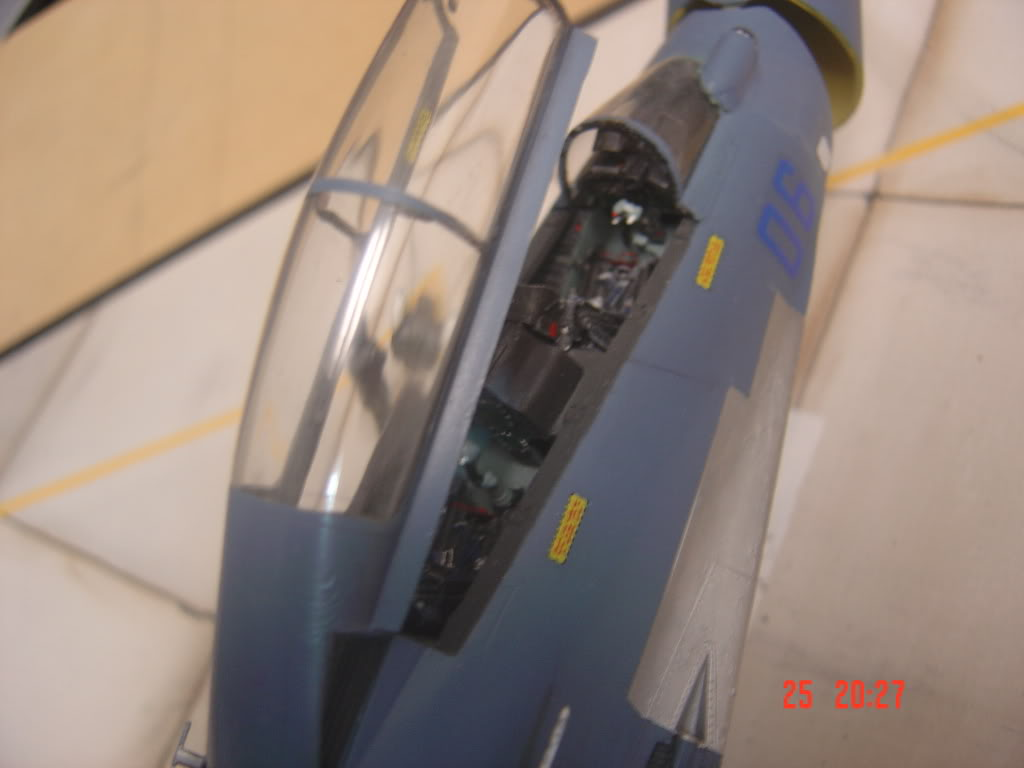 Su-30 MKI 1/48 DSC02776