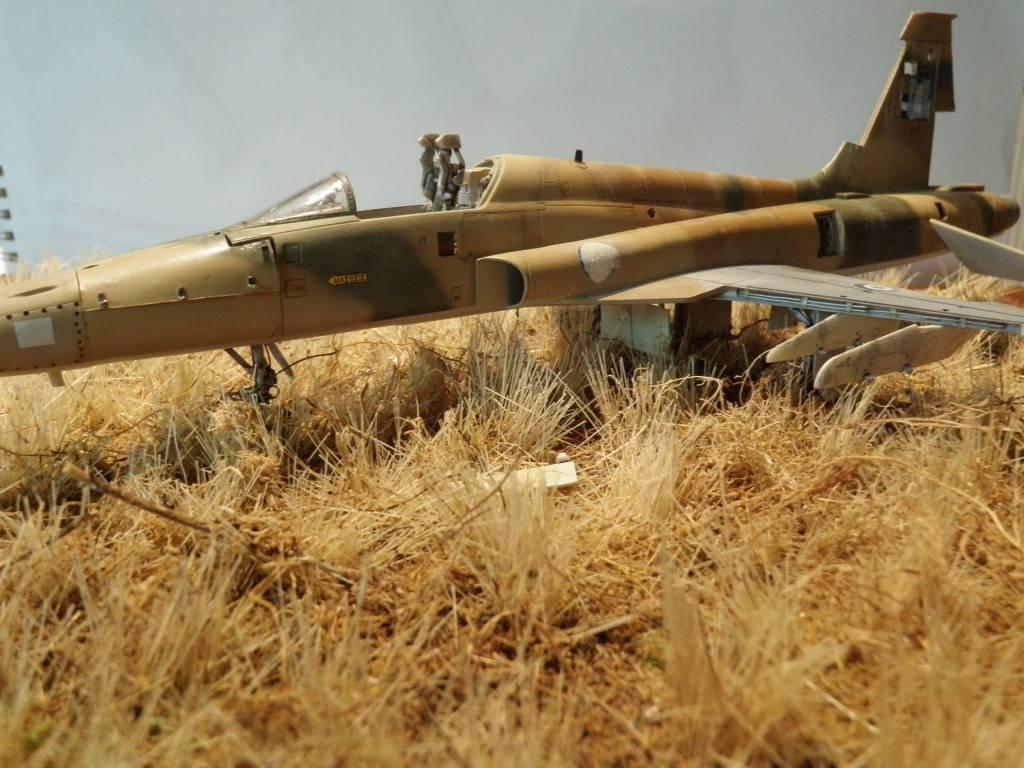 F-5A  1/48  ... P2030127_zps8df6f58f