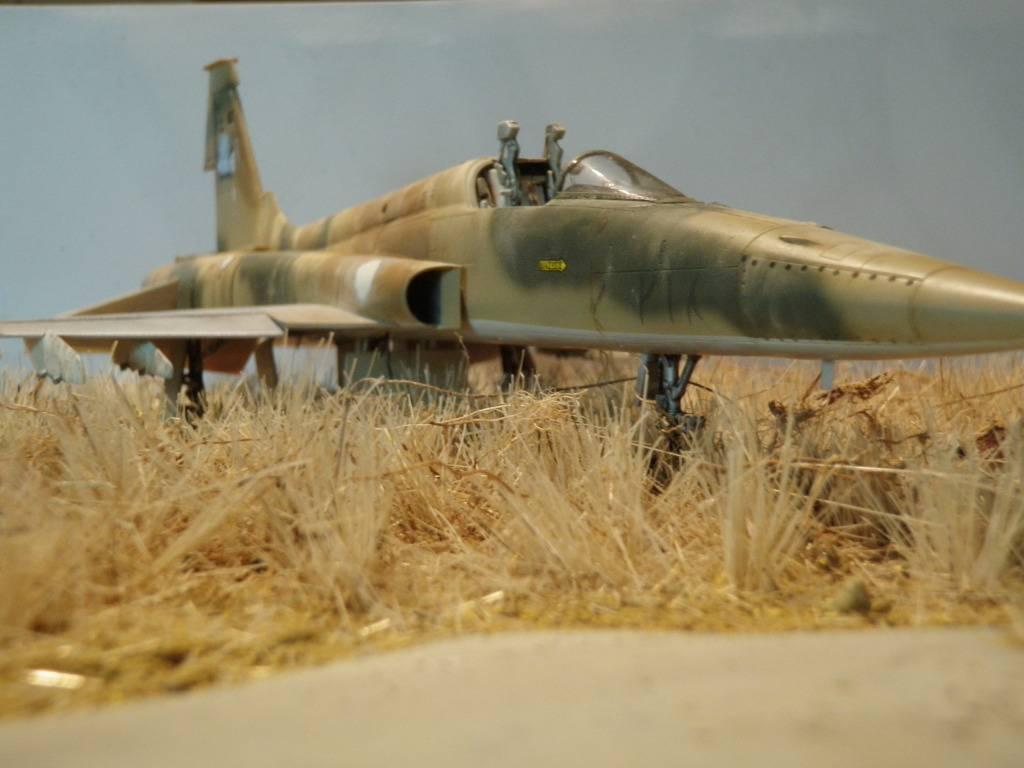 F-5A  1/48  ... P2030129_zpsebc67dc4