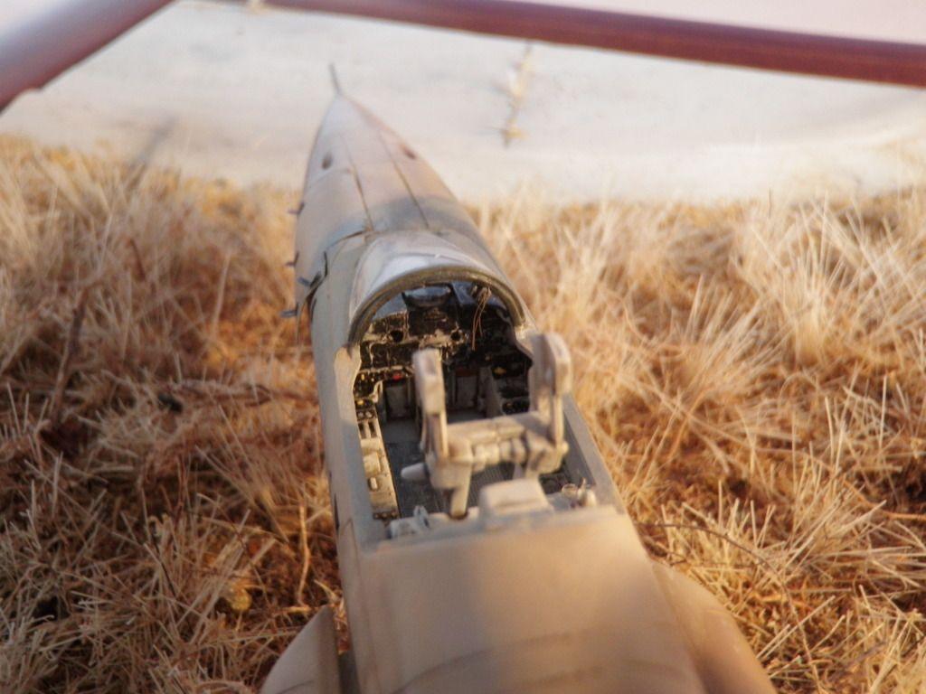F-5...ναι F-5 αλλά πως????? - Σελίδα 4 P2040143_zpsd14381c0