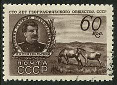 Ich bin ein Chinese, er ist mein Thema - Pferd RUS1947-1096