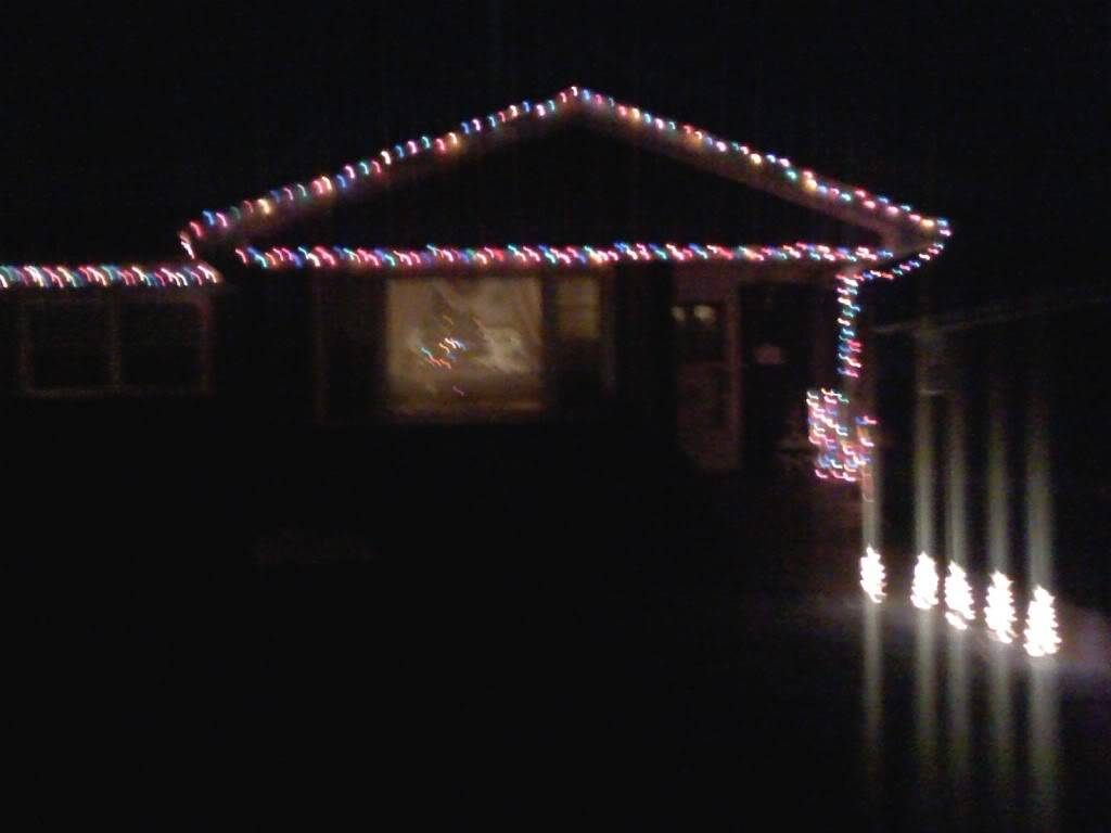 Post up pics of you holiday decorations IMG00002