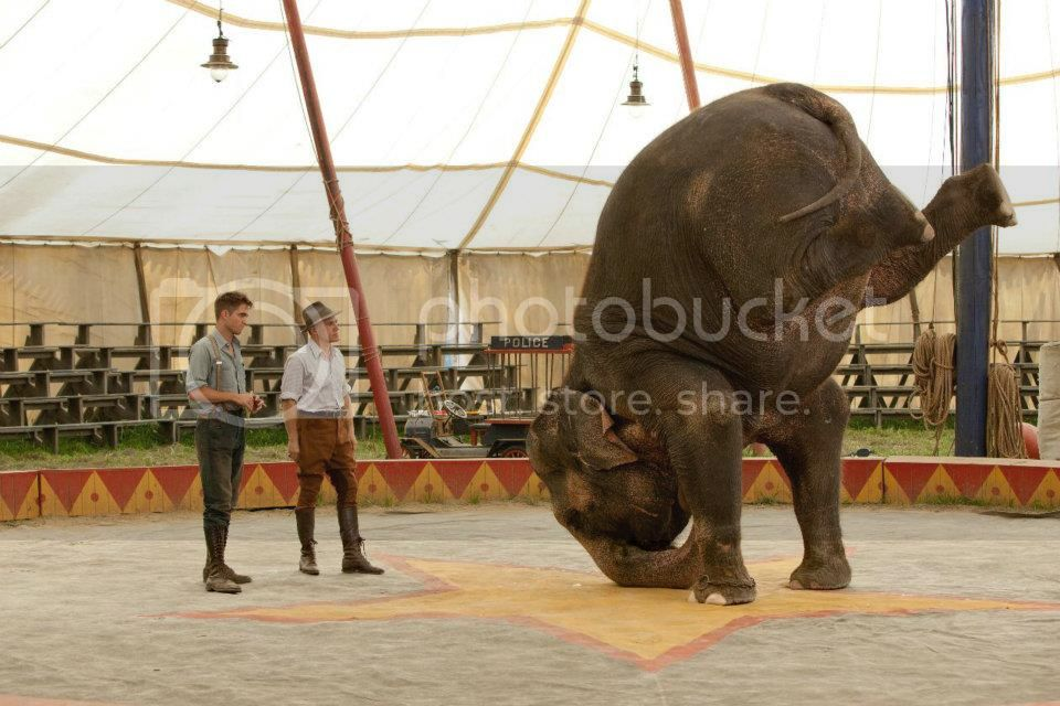 Still Water for Elephants... - Page 5 Oct12b
