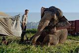 Still Water for Elephants... - Page 5 Th_oct12a
