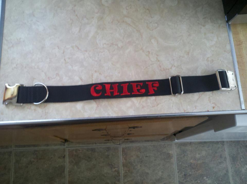 Chiefs New Collar!! Collar2