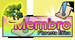 Nv. 0 - Floresta Élfica