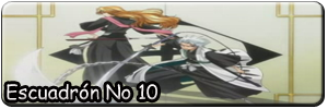 Escuadron No 10