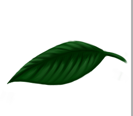 [Doodles] Mystear Leaf