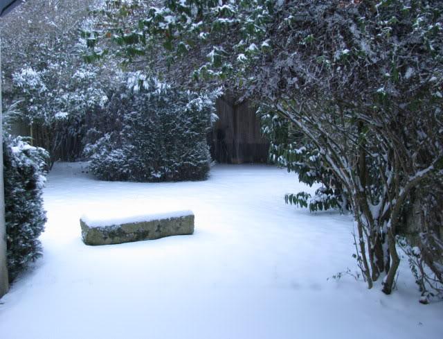 Dimanche, 5 février 2012 Neige2012II05