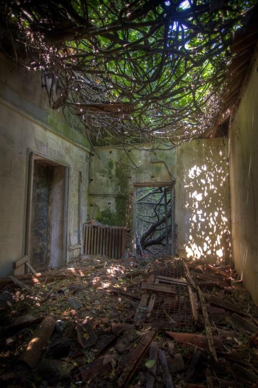 Lugares Embrujados:Poveglia: La Isla De Los Muertos Veneciana. Isla15_zps3b207878