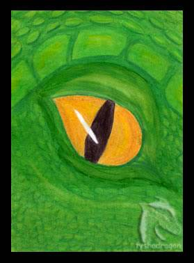 Tysha's Arts (Warning: Images) Last update 18th July ATC__Amber_Eye_by_tyshadragon