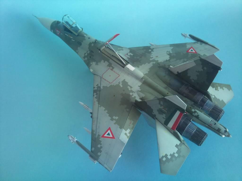 XXX Años del F-5 en México - Página 4 2012-11-30104306