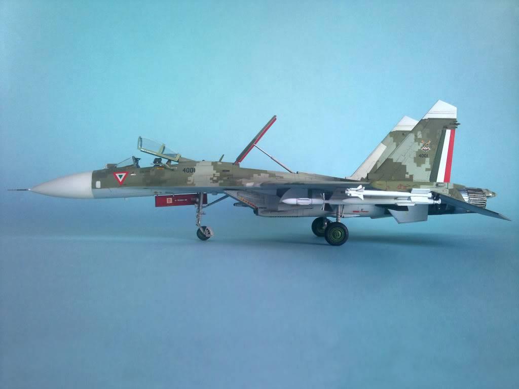 XXX Años del F-5 en México - Página 4 2012-11-30104327